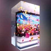 Custom LED Screen delivers immersive visual experience