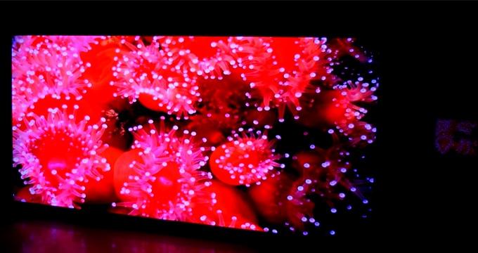 Wyświetlacz LED Fine Pitch Pitch tworzy jednolite, wysokiej jakości obrazy o jednolitym kolorze i dużej skali szarości (przy niskiej jasności)